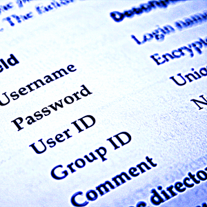 cyber security check your passwords identity theft